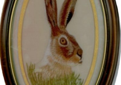 Hare! Hare! Jack Rabbit 2010