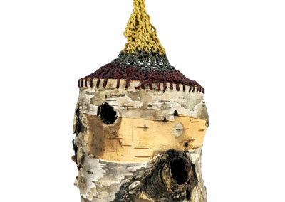 Cacoon (Robert Lyon, Joan Carrigan), 2012: Crochet yarn, string, birch bark. Collection of Arthur Perlett and Veronica Tricker.