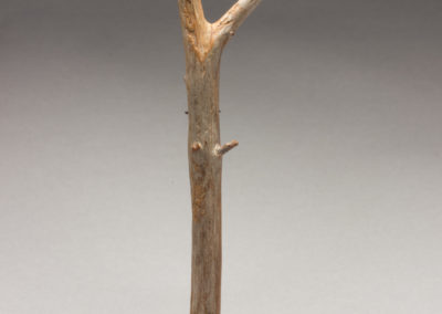 51. Innatus Forma Branch 2018-3 (Kye-Yeon Son), 2018: Wood, wax finish, silver, stainless steel. $280