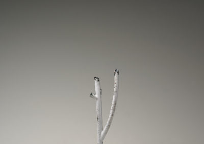 67. Branch 2010-4 (Kye-Yeon Son), 2010: Copper, enamel, stainless steel. $280