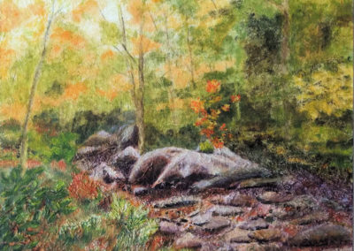 Dry Creek Bed- mixed-media