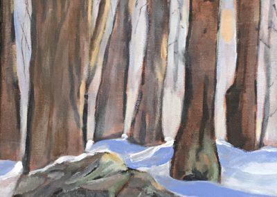 06 DOIG snowinthewoods.jpg
