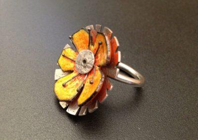 Enamel Ring(800x600)