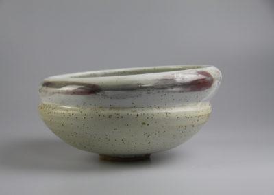 Comfort bowl