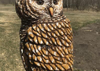 Barred Owl Log Carving